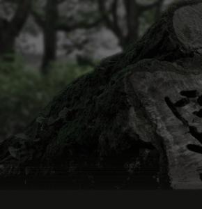 木のスピーカー・名刺入れ・木にこだわるkicoru